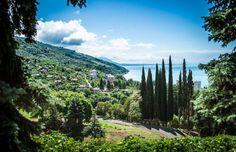 Абхазия, Пицунда  37 000 р. на 10 дней с 24 июля 2016  Отель: LUCETTE 3…