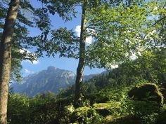 Wandern im Bregenzerwald und Erholung pur im exquisiten 4-Sterne Superior Lifestyle Resort Sonne Mellau in Österreich
