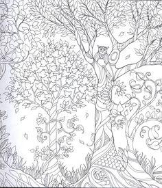 omalovánky les - Hledat Googlem