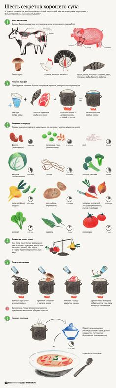 Ко дню супа — инфографика супов