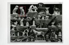 HUTSCHENREUTHER catalogue 1927 - pug