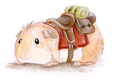 """Riding Guinea - Ursula Vernon's descriptions are as amusing as the art pieces themselves!""""The guinea pig is not known as a smart or reliable steed, nor even a terribly fast one, although they can put on a good scrambling turn of speed when panicked (often into walls, while uttering a frantic """"WHEEP! WHEEP!"""" as they go.)But they're cute and good-natured and exceedingly docile, and they utter a charming purr when happy, so people insist on thinking they're a good mount for the elderly and…"""