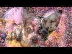 僕の描いた絵をご覧下さい!! ペットのワンちゃんネコちゃんその他動物画をパソコンでお絵描きしました。No3: