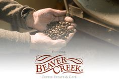 Beaver Creek understands that to love coffee is to live for coffee, which is why we have dedicated three decades to perfecting our specialty coffees. Grown on the world's most Southern coffee estate in the seaside town of Port Edward, our coffee is on par with the worlds finest. From only 4 trees back in 1984 to more than 60,000 trees now, Beaver Creek is still a family-owned business with three generations personally involved in the growing, harvesting and roasting of our much-loved coffee.