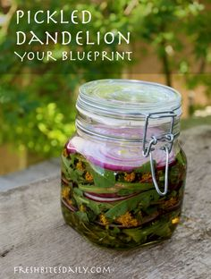 Pickled dandelion. Ha! Yes, these are some very good pickles.