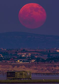 Bloody Moon! by Constantine Emmanouilidi on 500px