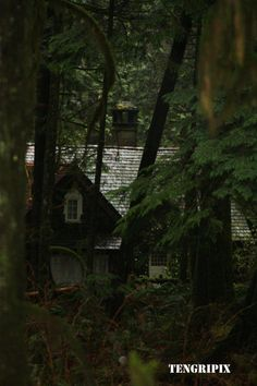 cabana da Bella amanhecer - Pesquisa Google