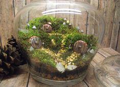Hobbit Habitat Terrarium-live moss terrarium-miniature hobbit doors- shire terrarium-Handmade by Gypsy Raku. $85.00, via Etsy.