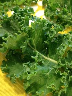 "Lemon Ginger Kale Chips! Even people who don't like ""healthy"" f..."