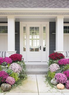 burgundy and pink fall front porch decor. Burgundy, purple and pink mums give a . burgundy and pink fall front porch decor. Burgundy, purple and pink mums give a non-traditional fall feel to this dark grey lake house. Small Front Porches, Farmhouse Front Porches, Farmhouse Door, Farmhouse Ideas, Front Yard Decor, Front Yard Landscaping, Landscaping Ideas, Front Porch Landscape, Front Porch Garden