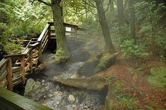 The Boardwalk to Hot Springs Cove, Vancouver Island. Places Around The World, Oh The Places You'll Go, Great Places, Beautiful Places, Places To Visit, Greatest Adventure, Adventure Time, Tofino Bc, Secret Secret