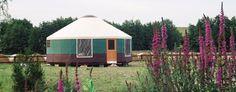 Yurt floorplans and pricing by rainier yurts