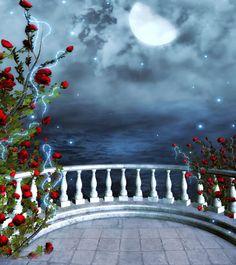10x10ft-Balcony-View-font-b-Moonlight-b-font-Rose-Muslin-Background-For-Photo-Studio-font-b.jpg (520×585)