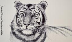 Ik vind een tijger een heel mooi dier daarom wil ik deze combineren met een oog