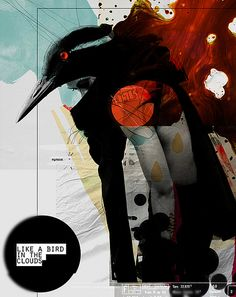 poster / like bird