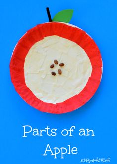 Explore Parts of an Apple Through Craft - The Resourceful Mama