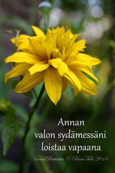 Runotalon voimakortti Annan valon sydämessäni loistaa vapaana - kultapallo