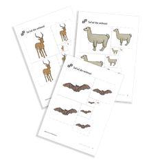 Size Sequencing of the serie Zoo Animals. Zoo Animals, Free Printables, Preschool, Free Printable, Kid Garden, Kindergarten, Preschools, Kindergarten Center Management