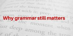 Does grammar still matter in a world where anyone can become a published author? Find out why it does in this Grease Monkey Search Blog posting.