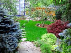 Stone path in lawn