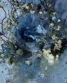Margriet Smulders Butterflies 2004