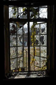 Broken window at an abandoned TB hospital in Maryland.  Photo by krristen on Flickr.