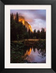 Yosemite Valley Golden Glow