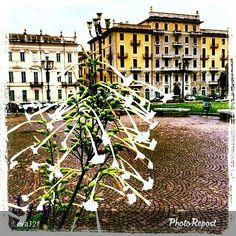 #Torino raccontata dai cittadini per #InTO Foto di @eva12f #piazzacarlina #torino #turin #torinoècasamia #monday #buongiorno #goodmorning #lunedì #instaturin #instagood #instamood