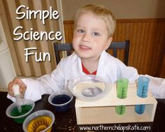 Simple Science Fun with Kids http://www.northerncheapskate.com/simple-science-fun-with-kids/