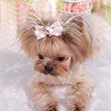 Dog hair bows are the cutest things ever!