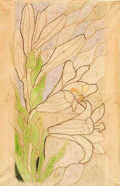 St. Wyspianski Drawing Sketches, Art Drawings, Art Nouveau Illustration, Botanical Art, Horticulture, Vintage Posters, Flower Art, Poland, Charcoal