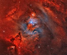A Fox Fur, a Unicorn, and a Christmas Tree. An image of the Fox Fur Nebula, the Cone Nebula and the Christmas Tree star cluster which are all located in the Monoceros (unicorn) constellation. Catalogued as NGC Alpha Centauri, Carl Sagan Cosmos, Eclipse Solar, Christmas Tree Images, Astronomy Pictures, Hubble Images, Star Formation, Star Cluster, Deep Space