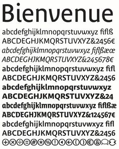 Turkish type design Behance     which Lucas de Groot had developed with typographic sensitivity on the  basis of his own interpolation theory  In addition to this  Thesis  range  of