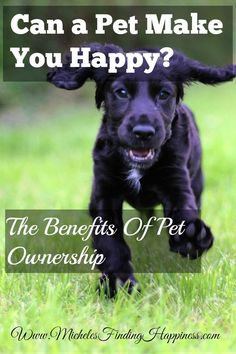 Can a Pet Make You Happy? The Benefits of Pet Ownership