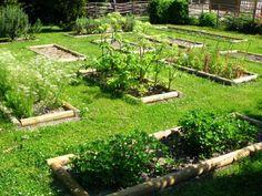 Le jardin de curé les plantes Cure, Diane, Garden Design, Outdoor Decor, Gardens, Home Interiors, Terrariums, Fur, Veggie Gardens