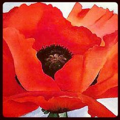 Red Poppy - Georgia O'Keefe #art