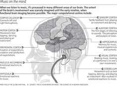 Wie #Musik unser #Gehirn beeinflusst