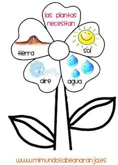 Kindergarten Science, Teaching Science, Science For Kids, Science Activities, Science And Nature, Preschool Spanish, Spanish Teaching Resources, Spanish Activities, Classroom Language
