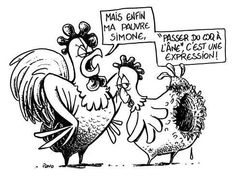 simone passe du coq a l ane Adult Humor, Troll, Animals And Pets, Funny Quotes, True Quotes, Funny Pictures, Jokes, Cartoon, Comics