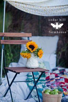 Easy Fall Decorating for a Picnic | Cedar Hill Farmhouse #countryfrench #decor #decoratingideas #decorating #decoratingtips #frenchcountrydecor #frenchcountrystyle