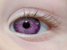 Los Ojos Más Hermosos y Extraños Del Mundo