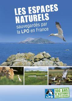 En 1912, la LPO est créée pour protéger le Macareux moine, oiseau marin nichant dans l'archipel des Sept-Îles en Bretagne. Un siècle après, la LPO France et ses associations locales gèrent plus de 21 000 ha…