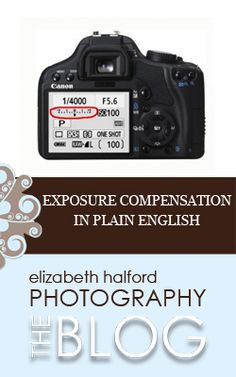Are you familiar with exposure compensation? Do you wonder why you can't just change your settings to adjust the exposure instead? Look  no further! I'll break it down Elizabeth Halford style: in plain English.