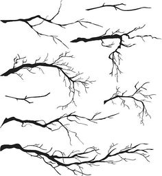 An Assortment of Bare Tree Isolated Branch Silhouettes. The branches. - An Assortment of Bare Tree Isolated Branches Silhouettes royalty-free stock vector art The Effectiv - Drawing Lessons, Drawing Techniques, Branch Drawing, Drawing Trees, Tree Drawing Simple, Winter Tree Drawing, Tree Line Drawing, Winter Drawings, Painting Trees