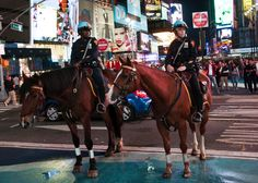 From Balto the hero Siberian Husky to the mail-carrying horses of the Pony Express, here are seven brave and hardworking animals to celebrate this holiday. New York Police, Work With Animals, Funny Moments, Animal Pictures, Cute Cats, New York City, Hero, Horses, Day
