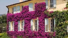 La Bastide Saint-Antoin, Provence Cote d'Azur