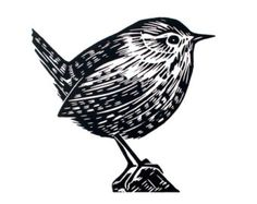 Wren Original Lino Print Illustration Etsy - Wren Is An Original Hand Pulled Linoprint This Is An Open Edition Of Prints Each Print Is Signed The Print Is Available On Its Own Or Presented In A Inch Professionally Cut Soft White Mount Woodcut Art, Linocut Prints, Linoprint, Bird Drawings, Wood Engraving, Tampons, Gravure, Woodblock Print, Illustration