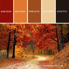 Red Leaf Trees Near the Road Color Palette – Ave Mateiu