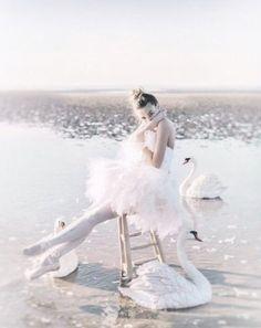 Ballerina and swans // ballet style Ballet Pictures, Dance Pictures, Tumblr Ballet, Dance Poses, Tiny Dancer, Ballet Photography, Ballet Beautiful, Ballet Dancers, Ballerinas