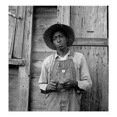 Tenant Farmer - Chatham County, North Carolina; Photo by Dorothea Lange, July 1939. (https://twitter.com/HawCreekShop/status/531075680218652672) (http://haw-creek.com/shop/tenant-farmer-1939/)